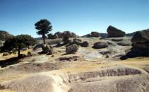landscape near Creel