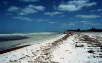 beach on Isla Holbox, Yucatán, Mexico