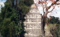 Tikal-Tempel-1, Guatemala