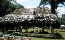 Bau eines Palapadachs in Caracol, Belize