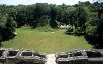 Blick auf die Plaza von Caracol, Belize
