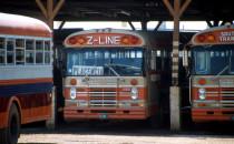 Busbahnhof - Dangriga