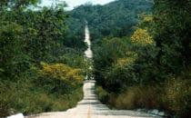 Straße nach Calakmul, Mexiko