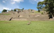Toniná, Mexiko