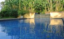 Quinta de las Flores - Pool