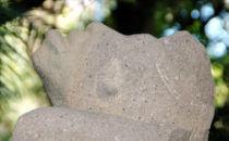Affe, der zum Himmel blickt (Detail)- Parque Museo La Venta