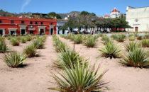 Platz in Oaxaca, Mexiko