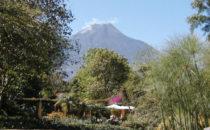Quinta de las Flores - Blick