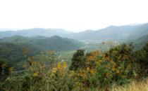 Landschaft bei Tancoyol, Sierra Gorda, Mexiko