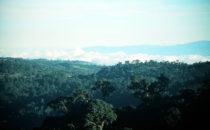 Über den Wolken am Mirador de Quetzales