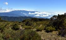 near San Gerardo de Dota, © K&T Ledermann