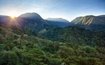Nebelwald © Mount Totumas, Panama