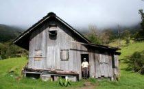 Nachbar der Lodge © Mount Totumas, Panama