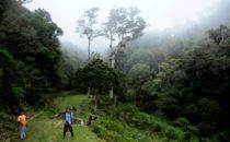 Wanderung, Mount Totumas, © Mount Totumas, Panama