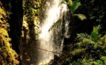 Wasserfall © Mount Totumas, Panama