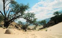 Sandpiste Namibia