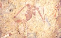 Felszeichnung am Brandberg, Namibia