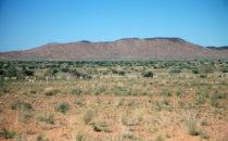 Blick auf den Brandberg, Namibia