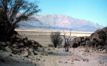 ausgetrocktenes Flussbett, Namibia