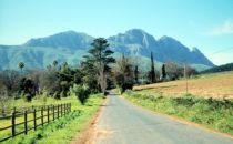Landschaft der Weinregion, Südafrika