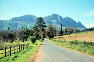 Landschaft der Weinregion