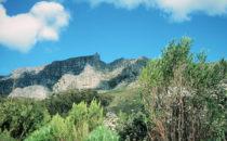 Kapstadt - zu Fuß am Tafelberg, Südafrika