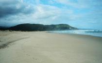der Strand von Nature's Valley, Südafrika