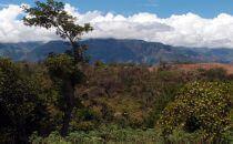 Landschaft bei Barichara