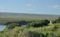 Rondawels, De Hoop Collection, De Hoop Nature Reserve, South Africa