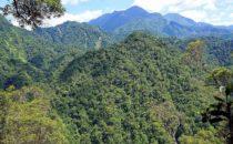 Cerro Azul Meámbar, Honduras © D&D Brewery