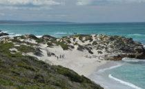 Dünenlandschaft, De Hoop Nature Reserve, Südafrika