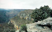 Panorama Route - Landschaft, Südafrika