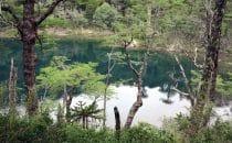 Parque Huerquehue, Lago Chico, © Bertram Roth