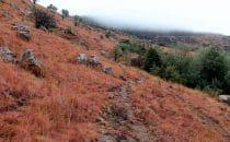 Mehloding Trail – Landschaft im Winter