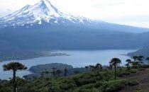 Sendero Sierra Nevada mit Blick auf den Vulkan Llaima, Chile, © Bertram Roth