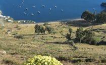 Isla del Sol, Titicacasee, Bolivien © Bertram Roth
