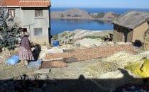 Kartoffeln werden getrocknet, Isla del Sol, Titicacasee, Bolivien © Bertram Roth