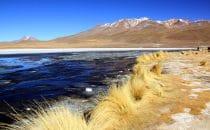 Laguna Hedionda, Altiplano, Bolivien