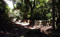 Wanderung nach Cabrera, Kolumbien