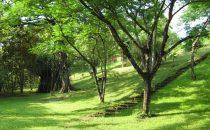 Horizontes de Montezuma, Montezuma, Costa Rica