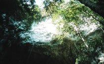 Rio Frio Cave, Belize