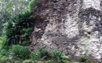 Ruine am Trek nach El Mirador, Guatemala © Uschi Sommer