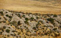 Etosha Dolomite Resort, Etosha National Park, Namibia