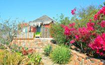 Los Colibris, Todos Santos, Baja California, Mexiko