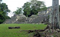 Ruinen von Caracol, Belize