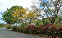 der Ort Orosi, Costa Rica