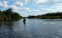 Kanu auf dem New River, Belize