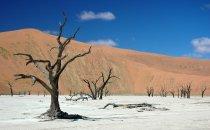 Sossusvlei - Deadvlei, Namibia