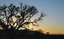 Sossusvlei Sonnenaufgang, Namibia