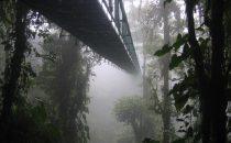 Monteverde Hängebrücke